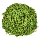Vickerman FS190920 8'' Green Mini Leaves Ball