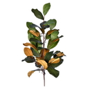 Vickerman FT190132 32
