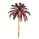 Vickerman FU190516 16