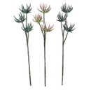 Vickerman FV193624 24