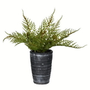 Vickerman FV196808 8.5