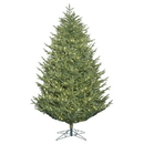 Vickerman G162466LED 6.5' x 59
