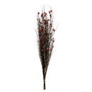 Vickerman H1BFL475-2 36-40