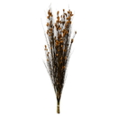 Vickerman H1BFL725-2 36-40