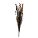 Vickerman H1BFL750-2 36-40