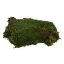 Vickerman H1MOU160 Green Moss Sheet - 8 oz./Bag