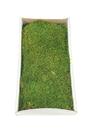 Vickerman H1MTR150 Green Moss Sheet - 8 oz./Tray