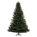 Vickerman K186382LED 9' x 74