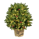 Vickerman K191831LED 3.5' x 32