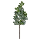 Vickerman RY191029 29.5