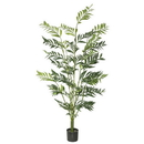 Vickerman TB170060 5' Robellini Palm X 5 W/537 Lvs.-Green