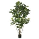 Vickerman TB170460 5' Potted Fiddle Tree W/168 Lvs-Green