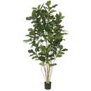 Vickerman TB170484 7' Potted Fiddle Tree W/240 Lvs-Green