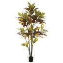 Vickerman TB170660 5' Potted Cronton Tree W/104 Lvs-Green