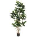 Vickerman TB170784 7' Potted Rubber Tree W/148 Lvs-Green