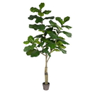 Vickerman TB180272 6' Potted Fiddle Tree 65Lvs