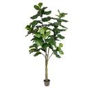 Vickerman TB180284 7' Potted Fiddle Tree 89Lvs