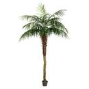Vickerman TB180384 7' Potted Pheonix Palm Tree 899Lvs