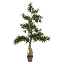 Vickerman TB180848 4' Potted Podocarpus Tree 2370Lvs
