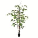 Vickerman TB190150 5' Potted Black Japanese Bamboo Tree