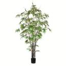 Vickerman TB190170 7' Potted Black Japanese Bamboo Tree