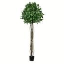 Vickerman TB190360 6' Potted Bay Leaf Tree 1008 Leaves