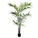 Vickerman TB190570 7' Potted Kentia Palm 150 Leaves