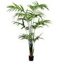 Vickerman TB190580 8' Potted Kentia Palm 216 Leaves