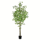 Vickerman TB190670 7' Potted Ginko Tree 960 Leaves