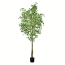 Vickerman TB190690 9' Potted Ginko Tree 1491 Leaves