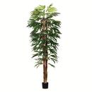 Vickerman TB190970 7' Potted Rhaphis Tree 551 Leaves