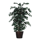 Vickerman TBU0740 4' Sakaki Bush