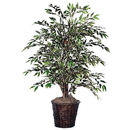 Vickerman TBU1340 4' Variegated Smilax Bush