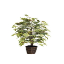 Vickerman TBU1740 4' Frosted Maple Bush