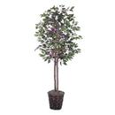 Vickerman TEC0360 6' Capensia tree