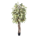 Vickerman TEX1760-07 6' Frosted Maple Executive