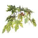 Vickerman THE1760-07 6' Frosted Maple Heartland