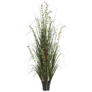 Vickerman TN170224 24