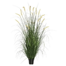 Vickerman TN170736 36