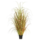 Vickerman TN170836 36