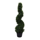 Vickerman TP170436 3' Boxwood Spiral In Pot (UV)
