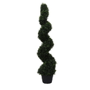 Vickerman TP170448 4' Boxwood Spiral In Pot (UV)