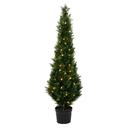 Vickerman TP170660LED 5' Cedar Tree UV 100WW LED