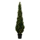 Vickerman TP170684LED 7' Cedar Tree UV 170WW LED
