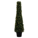 Vickerman TP192037LED 3' Potted Boxwood Cone 70 WmWht LED UV