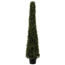 Vickerman TP192049LED 4' Potted Boxwood Cone 100 WmWht LED UV