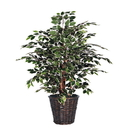 Vickerman TXX0240 4' Variegated Extra Full