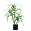 Vickerman TXX1140-06 4' Marginata Extra Full