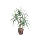 Vickerman TXX1140 4' Marginata Extra Full