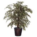 Vickerman TXX1340 4' Variegated Smilax Extra Full